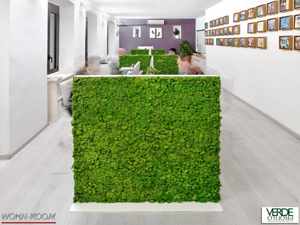 wandverkleidung_pflanze_mosswall_acoustic_moos_verdeprofilo_moospanel_mooswand_wandmoos_interior-design_greenwall_wohn-room