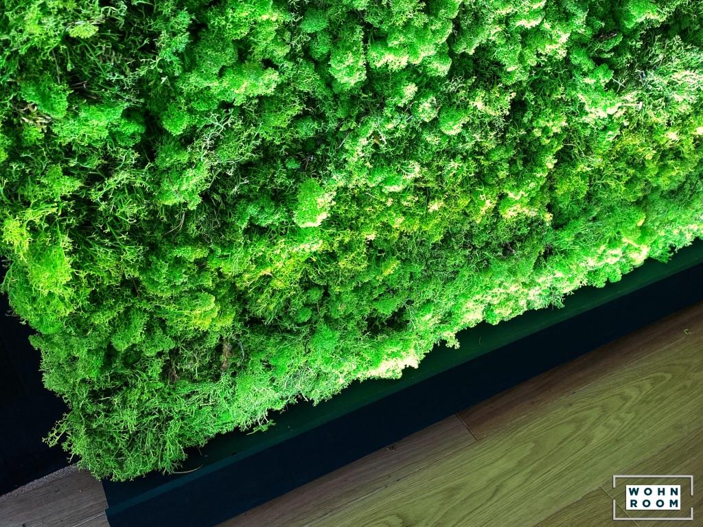 wandverkleidung_licht_lupen-led_kaltlicht_moos_fusion_wandbeleuchtung_wohn-room